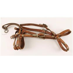 Spotted Leather Bridle