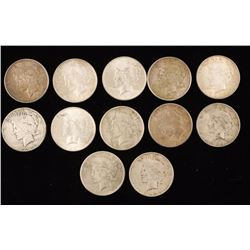 Collection of 12 Peace Silver Dollars