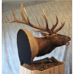 Natures Own Kudu or Elk Shoulder