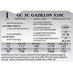 Lot 1 - GC 3C Gazillon 528C
