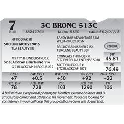 Lot 7 - 3C Bronc 513C