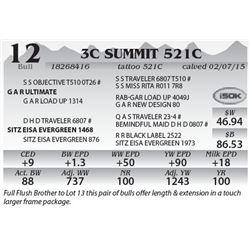 Lot 12 - 3C Summit 521C