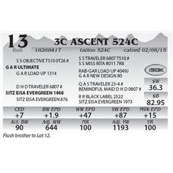 Lot 13 - 3C Ascent 524C