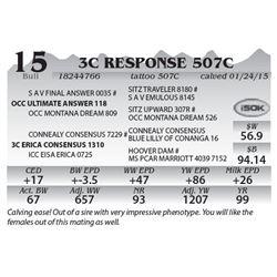 Lot 15 - 3C Response 507C