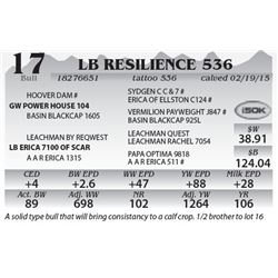 Lot 17 - LB Resilience 536