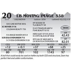 Lot 20 - LB Moving Image 538
