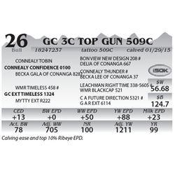 Lot 26 - GC 3C Top Gun 509C