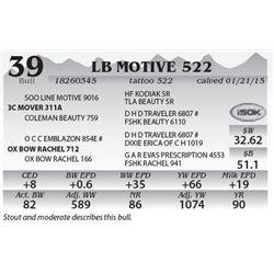Lot 39 - LB Motive 522