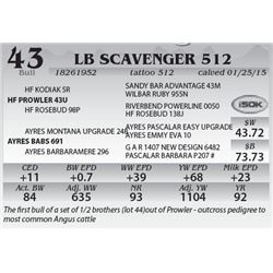 Lot 43 - LB Scavenger 512