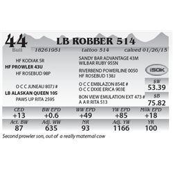 Lot 44 - LB Robber 514