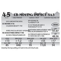 Lot 45 - LB Moving Impact 543