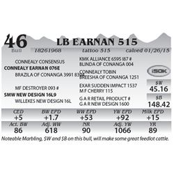 Lot 46 - LB Earnan 515