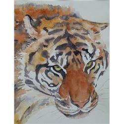 Ann Hilton - Tiger, Tiger