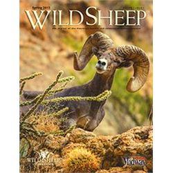 Wild Sheep Magazine 1/2 page ad