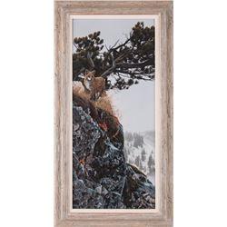 Rod Frederick, oil on canvas