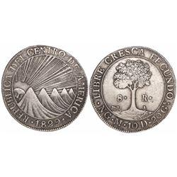 Guatemala (Central American Republic), 8 reales, 1829M.