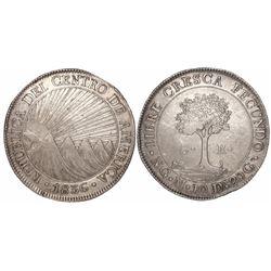 Guatemala (Central American Republic), 8 reales, 1836M.