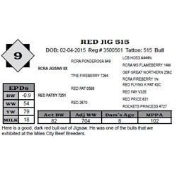 Lot 9 - RED JIG 515