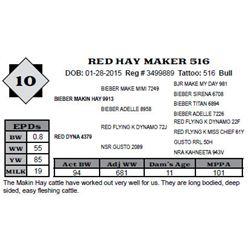 Lot 10 - RED HAY MAKER 516