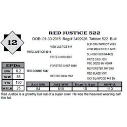 Lot 12 - RED JUSTICE 522