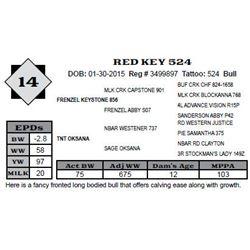 Lot 14 - RED KEY 524