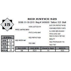 Lot 15 - RED JUSTICE 525