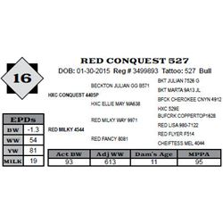 Lot 16 - RED CONQUEST 527