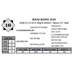 Lot 18 - RED KING 531
