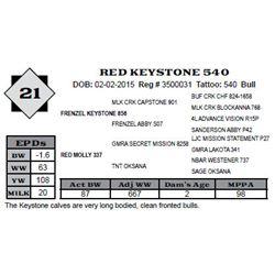 Lot 21 - RED KEYSTONE 540