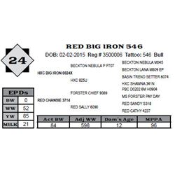 Lot 24 - RED BIG IRON 546