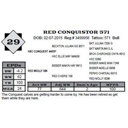 Lot 29 - RED CONQUISTOR 571