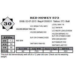 Lot 30 - RED HOWEY 573