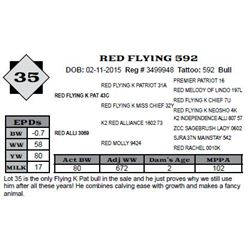 Lot 35 - RED FLYING 592