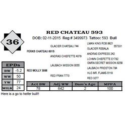 Lot 36 - RED CHATEAU 593