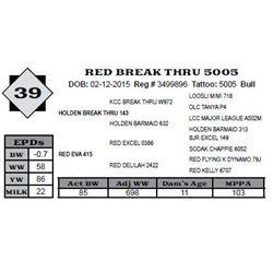 Lot 39 - RED BREAK THRU 5005