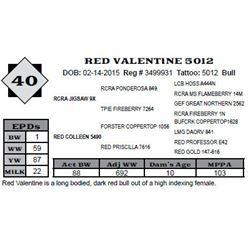 Lot 40 - RED VALENTINE 5012