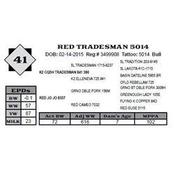 Lot 41 - RED TRADESMAN 5014