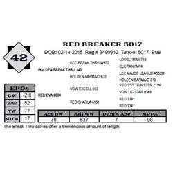 Lot 42 - RED BREAKER 5017