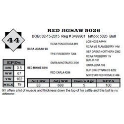 Lot 44 - RED JIGSAW 5026