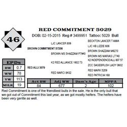 Lot 46 - RED COMMITMENT 5029