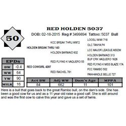 Lot 50 - RED HOLDEN 5037