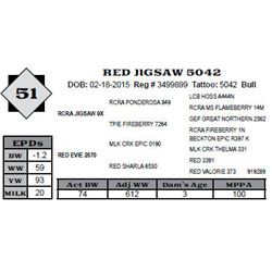 Lot 51 - RED JIGSAW 5042