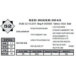 Lot 52 - RED JIGGER 5043