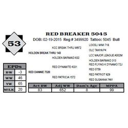 Lot 53 - RED BREAKER 5045