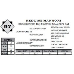 Lot 57 - RED LINE MAN 5073