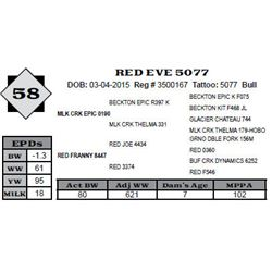 Lot 58 - RED EVE 5077