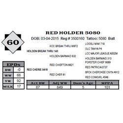 Lot 60 - RED HOLDER 5080