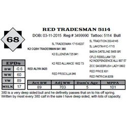 Lot 68 - RED TRADESMAN 5114