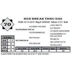 Lot 70 - RED BREAK THRU 5121