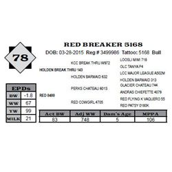 Lot 78 - RED BREAKER 5168